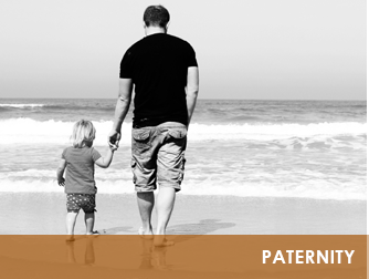 Tampa Paternity Lawyer